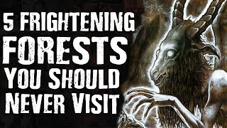 5 FRIGHTENING FORESTS You Should Never Visit