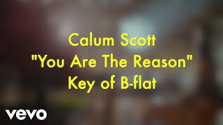 Calum Scott - You Are The Reason (Karaoke Version) - Video Youtube