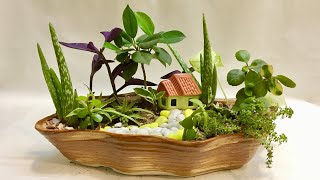 Cute Fairy Garden | DIY Fun Gardening Ideas With Indoor Plants For Beginners Step By Step | India