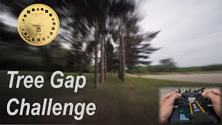 Tree Gaps | BrockLeeFPV #TokenChallenge #QAV-S #FPVFreestyle