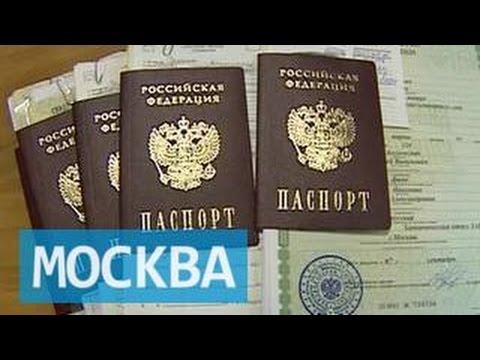 Подмосковным молодоженам разрешат не менять документы после смены фамилии