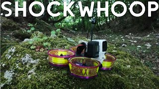 Shockwhoop BANDO exploration - cinewhoop - Reelstady go - ShockWave fpv