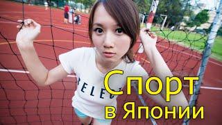 Спорт в Японии. Отношение Японцев к Спорту