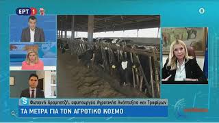 """Η ΥφυπΑΑΤ, Φ. Αραμπατζή για την ενεργοποίηση της """"Κάρτας του Αγρότη"""" (ΕΡΤ1-27.03.20)"""