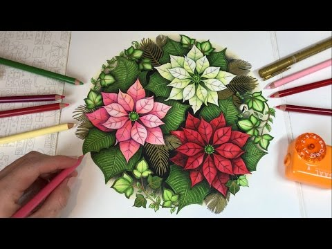 poinsettias johannas christmas coloring book
