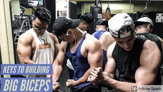 HOW TO BUILD BIG BICEPS FOR SKINNY GUYS