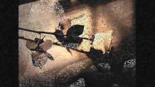 Piya More  - Pakeeza - Zubeen Garg - Full Song - 2013