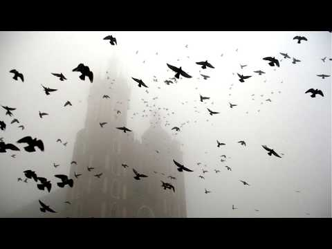 ДДТ - На небе вороны