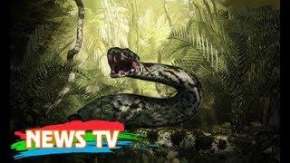 Huyền thoại về loài rắn khổng lồ trên hòn đảo có 99 ngọn núi