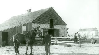 Preview image of The History of Churches Ranch
