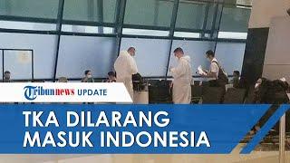 Menteri Hukum dan HAM Perketat Aturan, TKA Resmi Dilarang Masuk ke Indonesia Selama PPKM