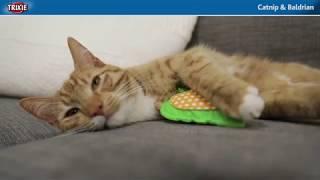 Кошачья мята спрей для кошек Trixie 50 мл от компании Интернет-зоомагазин Рекс - видео