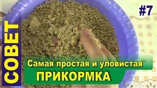 Прикормка для рыбы из пшена и геркулеса