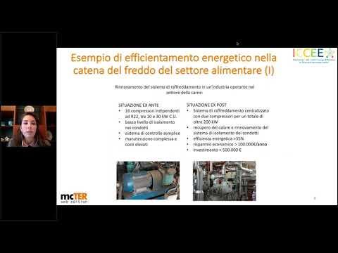 Efficienza energetica, Energy management, Green New Deal, Industria alimentare, Refrigerazione, Termotecnica