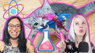The Science of Cat Behavior!