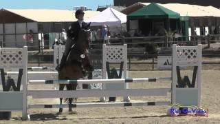 112S Sarah Petrek on Living Right SR Training Amateur Show Jumping Woodside August 2015