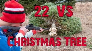 22 Vs Christmas Tree 🎄 How Many Shots Will It Take? | Gould Brothers