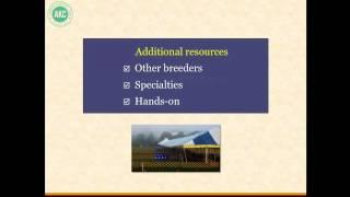 AKC Breeder Webinar: Planning Breedings