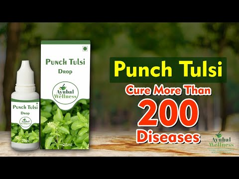 Ayu Punch Tulsi Oil Drop ( for Cough & Fever)