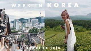 A WEEK IN KOREA: The Ultimate K-Beauty Tour in Seoul & Jeju!