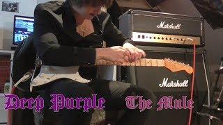 Deep Purple - The Mule (guitar cover)