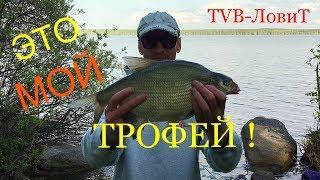 ЭТО ТРОФЕЙ! Летняя СУПЕР рыбалка 2018 | Ловля Леща на Фидер.