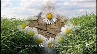Chris de Burgh - Go Where Your Heart Believes (Lyrics)