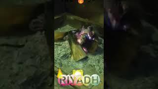 preview picture of video 'نفود الخرارة المزاحمية تصويري فيديو سناب سناب شات ضو حطب رمل الرياض السعودية snap video sand ksa Sau'