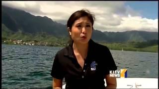 Disease outbreak killing Coral around Hawaii