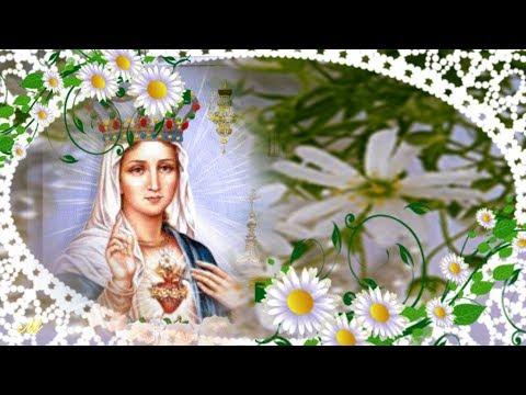 Молитва песнь богородице видео