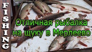 Чеховский район рыбалка в капустино