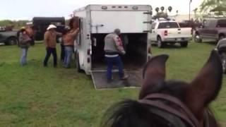 Rio Mar Trailriders - Horse Tries To Climb Through Window, Part 1