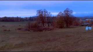 First fly without fall - FPV