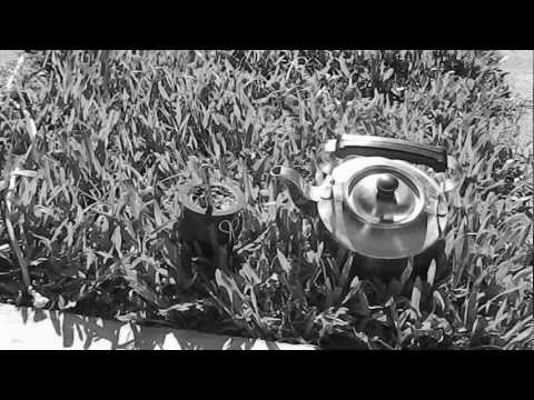 KYUSS - Mudfly (HD)