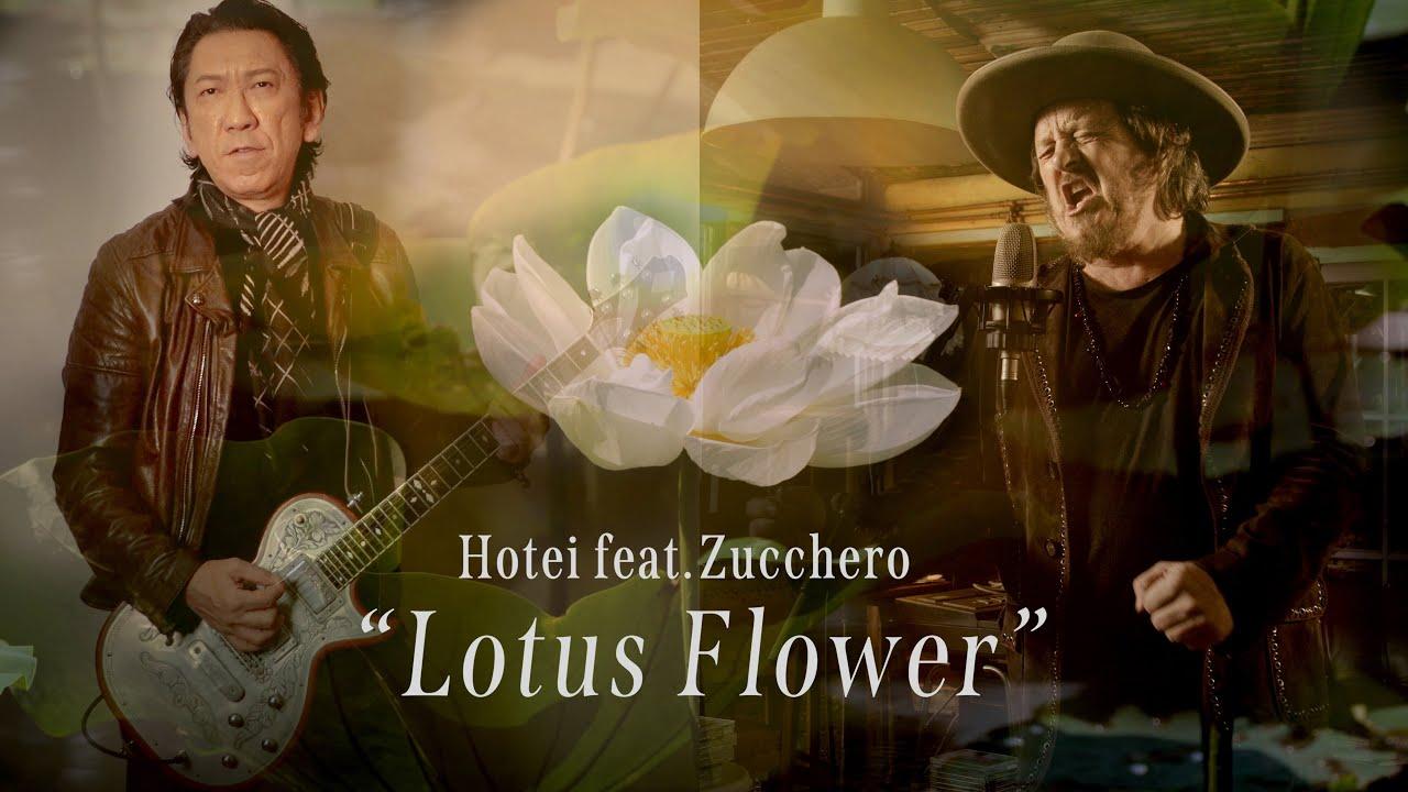 布袋寅泰「Lotus Flower feat. Zucchero」MUSIC VIDEO