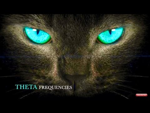 🔮GET TURQUOISE CAT EYES FAST!! BIOKINESIS HYPNOSIS MEDITATION SUBLIMINAL FREQUENCY BINAURAL BEAT🔮