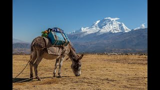 When to go to peru lonely planet