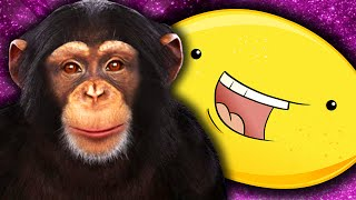 EVIE'S MONKEY! - Chimbot Cleverbot - (Funny Moments)