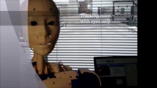 Inmoov Camera Tracking With Eyes, Head And Torso