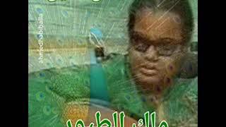 ملك الطيور - حنان النيل HD تحميل MP3