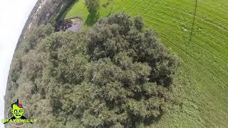 Tree Playground FPV