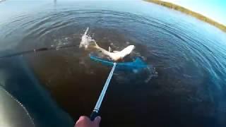 Рыбалка в караганде весной