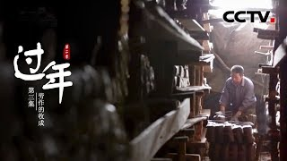 《过年》第二季 第三集 劳作的收成 | CCTV纪录
