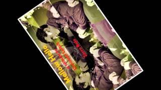 Zorro Rojo - A Poor Man's Sunshine (Tributo a Donovan Leitch)