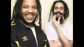Damian Marley and Stephen Marley - All Night