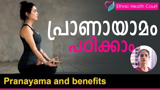 Pranayama and health benefits | പ്രാണായാമം - ആരോഗ്യ ഗുണങ്ങൾ | Ethnic Health Court - Download this Video in MP3, M4A, WEBM, MP4, 3GP