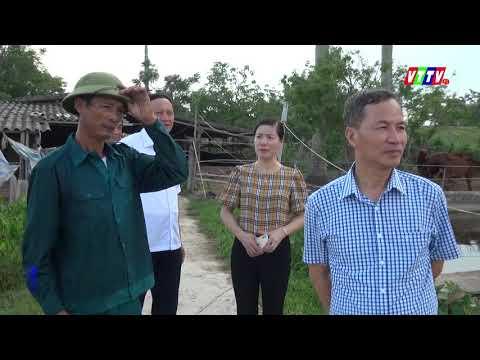 Các đồng chí lãnh đạo tỉnh về thăm mô hình, dự án PTKT tại huyện Vũ Thư