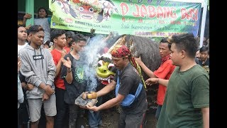 Keblak -keblak JSKWK Jaranan Sarip Kembang Wongso Kenongo Seni Terbaru Banyuwangi Aliyan