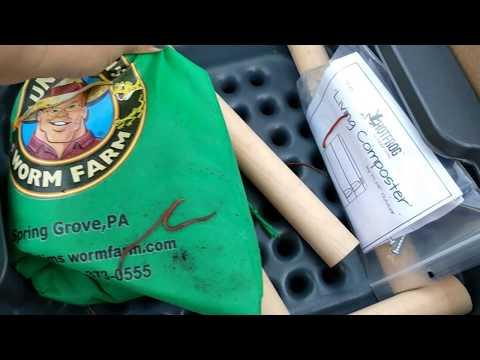 Anumang mga senyales ng pagkakaroon ng mga parasites sa katawan