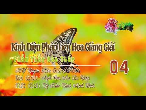 Phẩm Thấy Bảo Tháp Thứ Mười Một 4/4